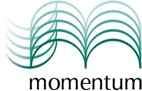 Momentum Career Consulting